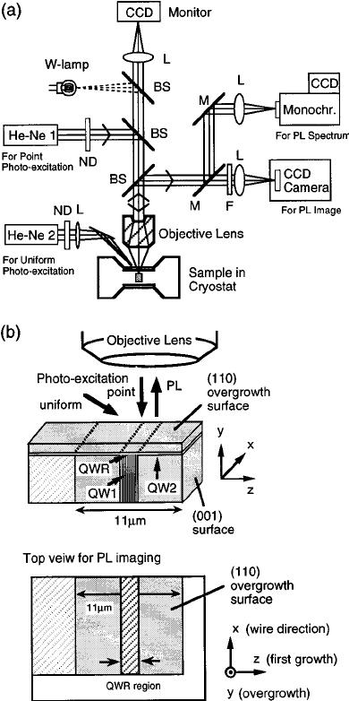 ͑ a ͒ The schematic of micro-PL setup. M; mirror, L, lens