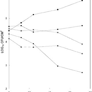 Assays of bacteriocin (BCN)-like activity against