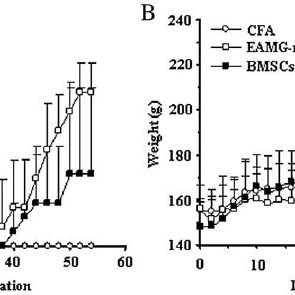 The effect of BMSCs on the distribution of Th cells. (Top