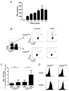 PSK stimulates IFN-γ production from CD56 bright NK cells