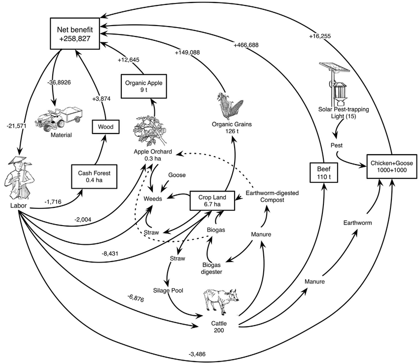 A schematic diagram of Biodiversity Management of Organic