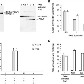 (PDF) Recombinant Factor IX Fc Fusion Protein Maintains