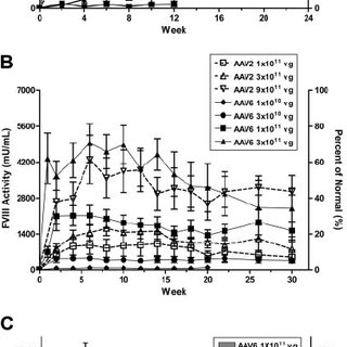 (PDF) Multiyear therapeutic benefit of AAV serotypes 2, 6