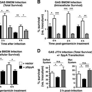 (PDF) A Group A Streptococcus ADP-Ribosyltransferase Toxin
