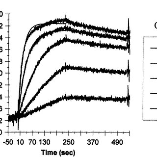 PEG±maleimide polymers. ( A ) Formation of thioether bond