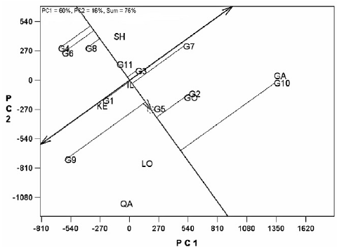 Site regression (SREG) biplot of mean and stability of 11