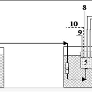 (PDF) Calcium sulfate and calcium carbonate simple and