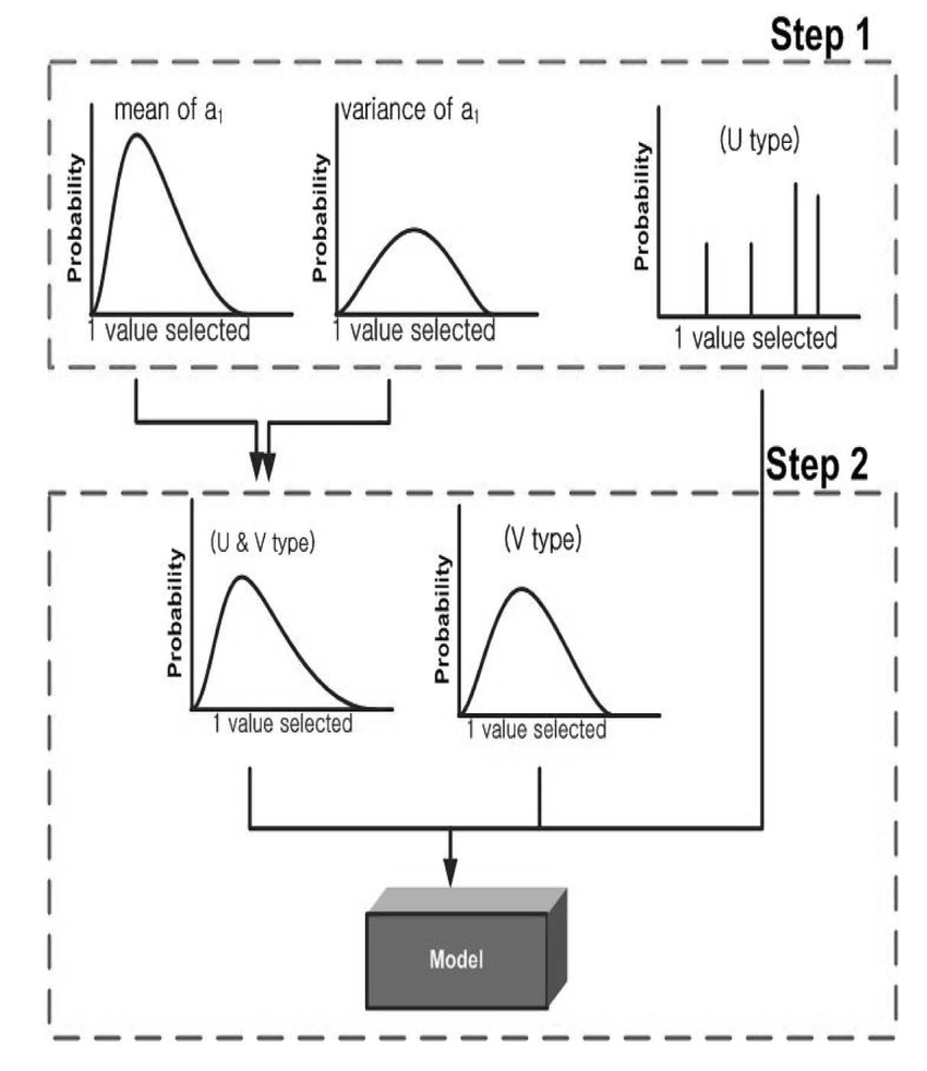 Illustration of the 2D Monte Carlo simulation in Steps 1