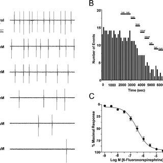 (PDF) 2A Adrenergic Receptor Activation Inhibits