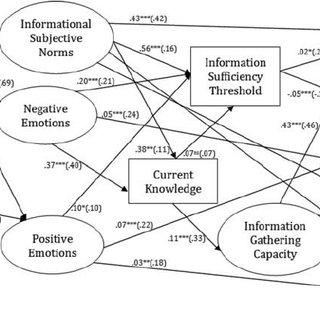 The amended RISP model (based on Griffin et al., 2013