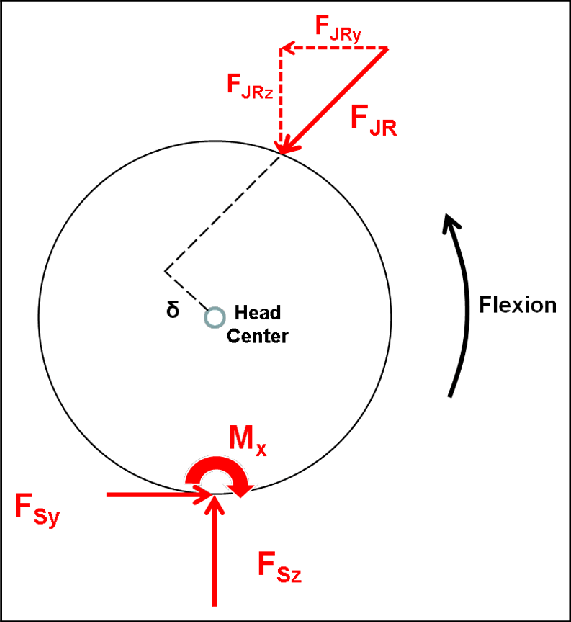 Resultant forces and moments on the femoral head with