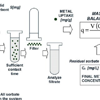 (PDF) The investigation of lead removal by biosorption: An
