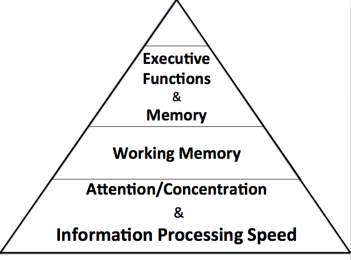Hierarchy of Cognition. Adapted from Voelbel, G. T. (2014