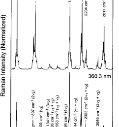 resonance raman spectra of gas phase chlorine dioxide obtained with excitation wavelengths of 368 9 nm [ 725 x 1136 Pixel ]