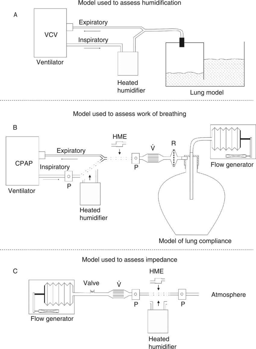 hight resolution of a ventilator evita 2 delivered volume controlled ventilation to a moisture proof physical lung model b model used for measurements of work