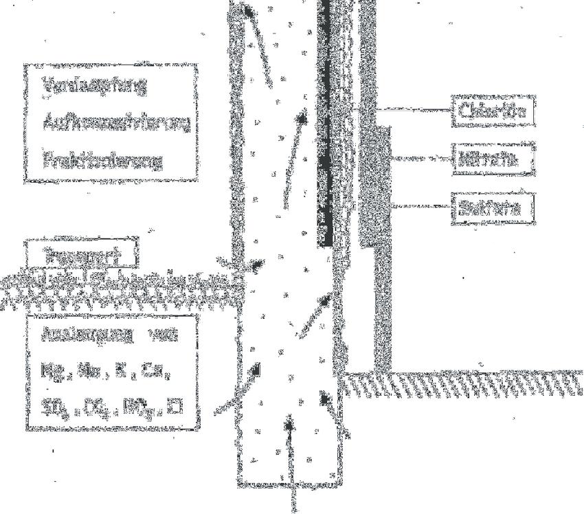 Abbildung 3: Schematische Darstellung von Ursprung
