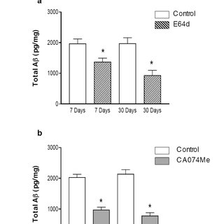 In vivo administration of CA074Me or E64d improves memory