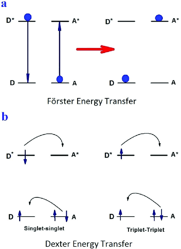 Schematic illustrations of (a) the Fö rster energy