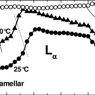 Lyotropic phase diagrams of lipids: dioleoyl PC (DOPE