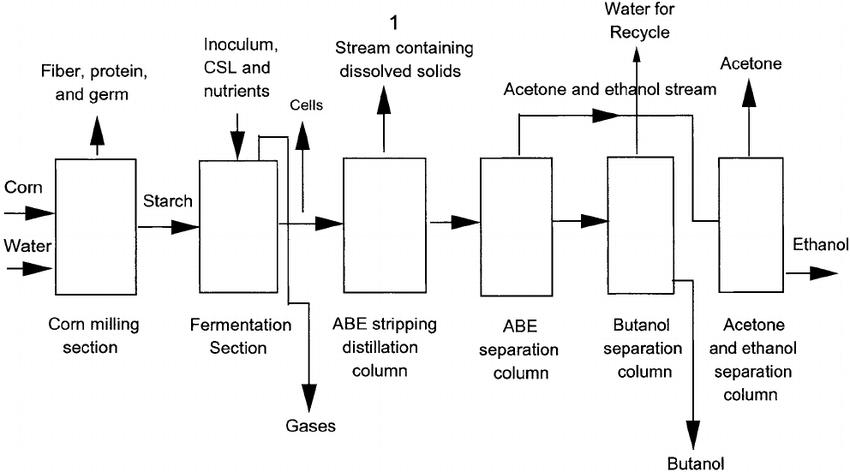 A schematic diagram of butanol production by fermentation of corn ( | Download Scientific Diagram