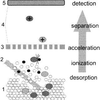 (PDF) Applications of MALDI-TOF MS analysis in cyanotoxin
