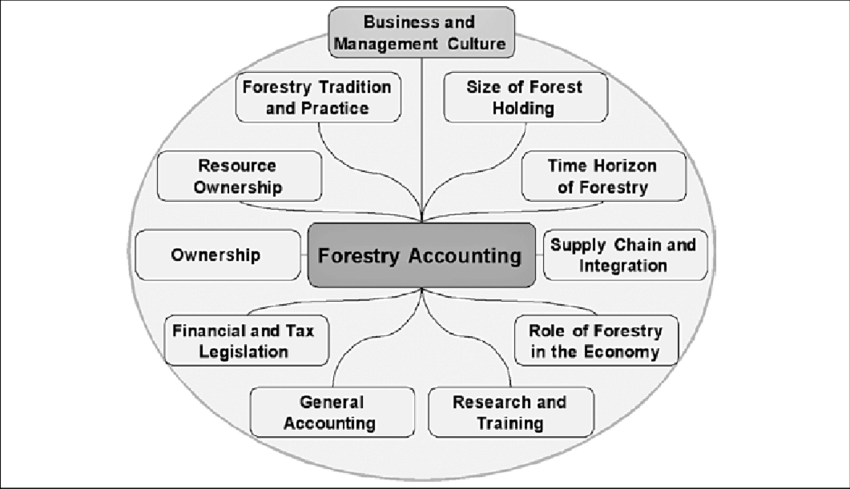 Influence factors from the business environment on