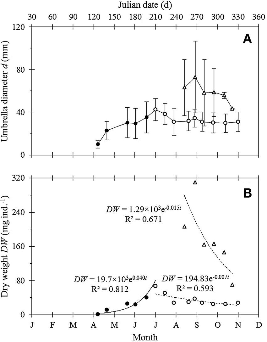 medium resolution of a mean sd umbrella diameter of jellyfish download scientific diagram