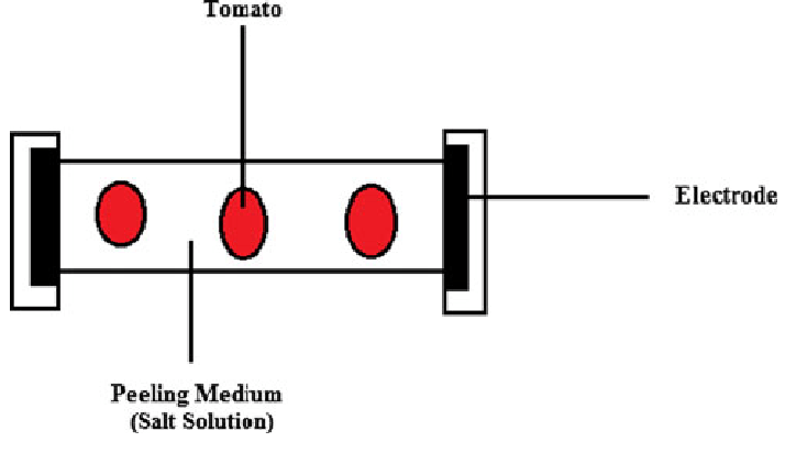 Schematic showing an ohmic heating in tomato peeling