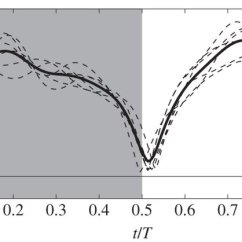 Bumble Bee Diagram 2000 Ford Taurus Belt Wiring Block Wingtip Trajectory And Force Production Of Bumblebee Hummingbird Infographic