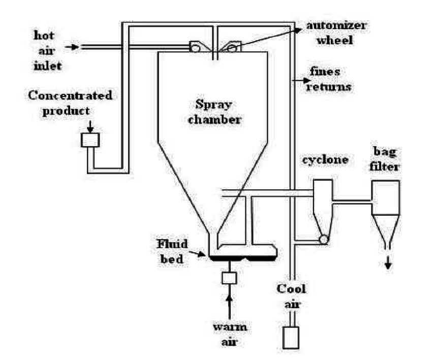 Spray drying method for preparation of microspheres