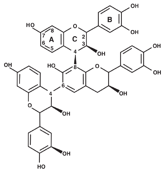 Basic structure of a condensed tannin showing