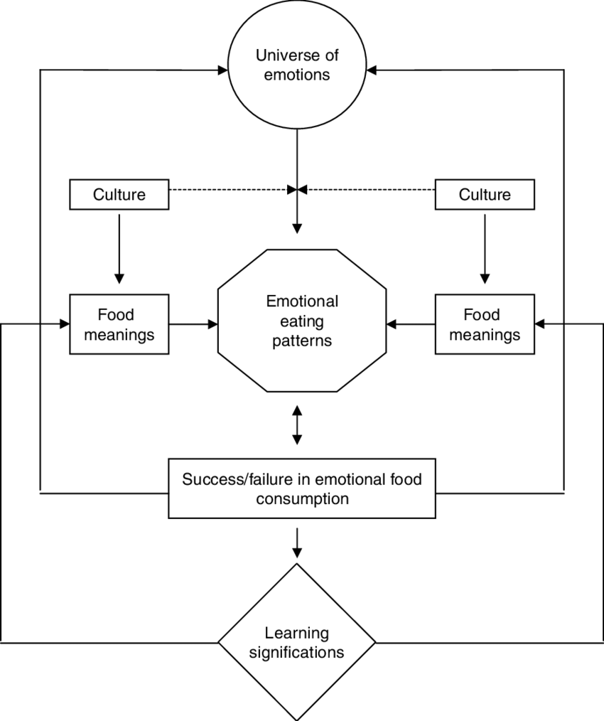 hight resolution of a general framework model for analyzing emotional eating in different cultures