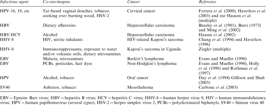 Hypotheses -etiology of selected human cancers | Download Table