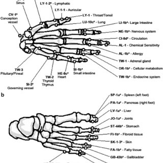 (PDF) Electrodermal Measurement of Acupuncture Points May