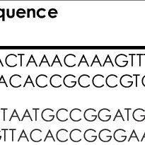 Taxonomy of genus Bacillus (Source: Bergey's manual of