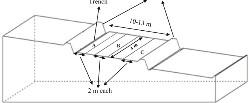 A cross-section sketch drawing of a plot showing the three
