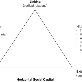 (PDF) The Interrelations of Social Capital with Health and
