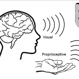 (PDF) Does a Combination of Virtual Reality