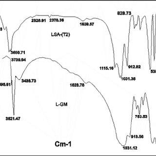 Geology of Bukit Lampas and the Keramat Pulai area, Ipoh