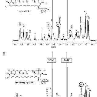 (PDF) Nystatin Biosynthesis and Transport: nysH and nysG