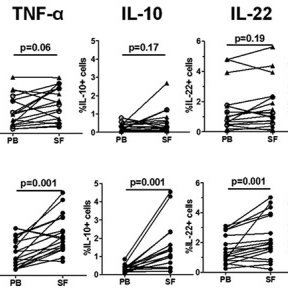 (PDF) Interleukin-17+CD8+T Cells Are Enriched in the