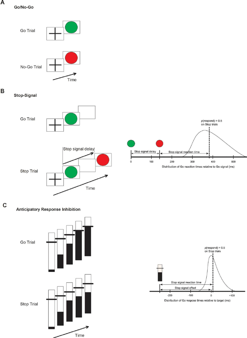 Schematics of go/no-go ( A ), stop-signal ( B ), and