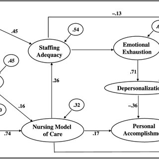 (PDF) The Impact of Nursing Work Environments on Patient