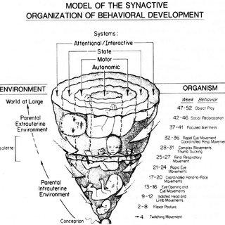 (PDF) Newborn Individualized Developmental Care and