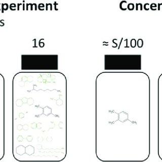 (PDF) Mixture Effects on Biodegradation Kinetics of