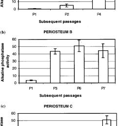 alkaline phosphatase activity mm pnp mg protein of periosteum derived download scientific diagram [ 850 x 1547 Pixel ]