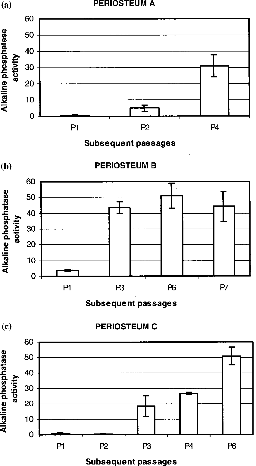 medium resolution of alkaline phosphatase activity mm pnp mg protein of periosteum derived download scientific diagram