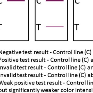 (PDF) What Should the Ideal HIV Self-Test Look Like? A