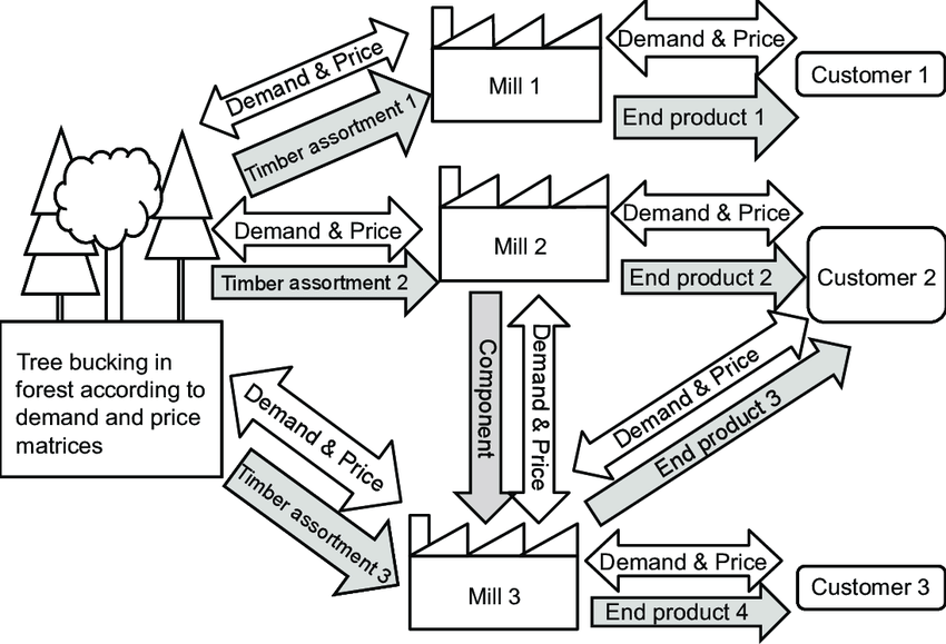 A schematic drawing of supply chains in forest industry
