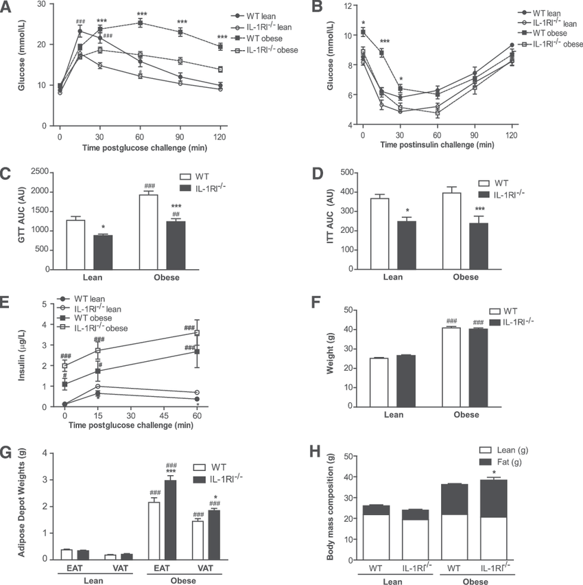 GTT and ITT in WT and IL-1RI 2/2 mice at baseline and